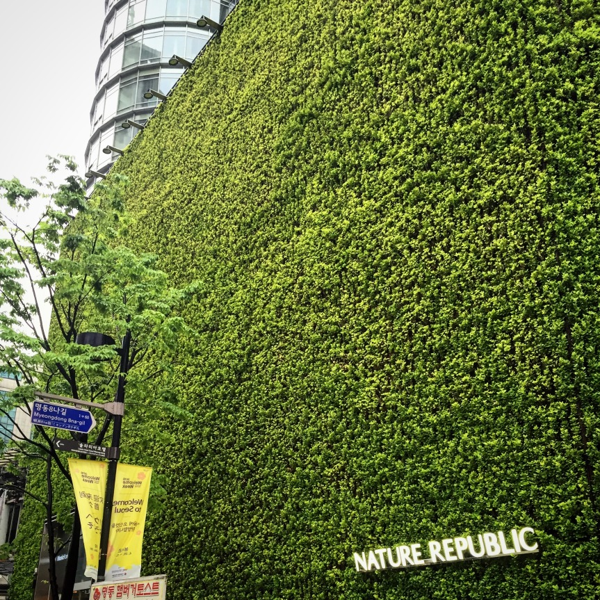 The Inspiration: Myeongdong, SouthKorea